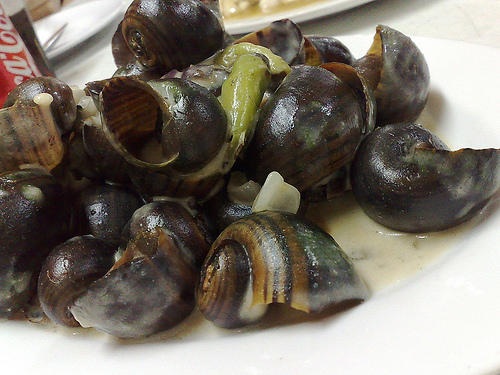 A Dog as a Kids Meal and Snails in Coconut via Manilla