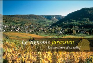 Vignoble-photo1