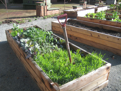 Communitygardenplot