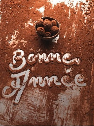 bonne annee 2011 good health have a chocolate happy new year