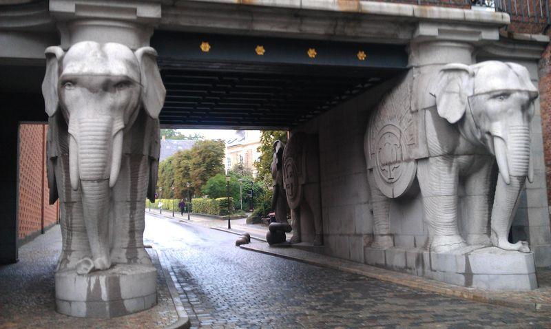 Elephant gate