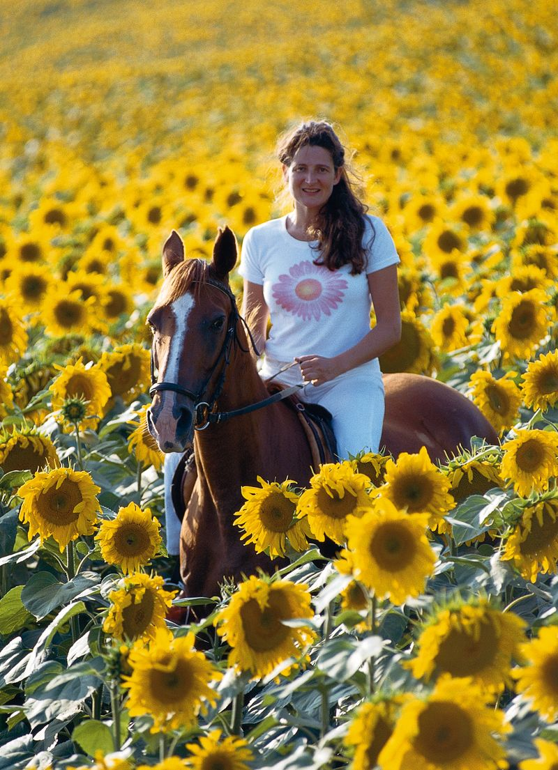 Kathryn Ireland in the sunflowers on horseback