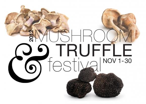 Mushroom_trufflev4_01