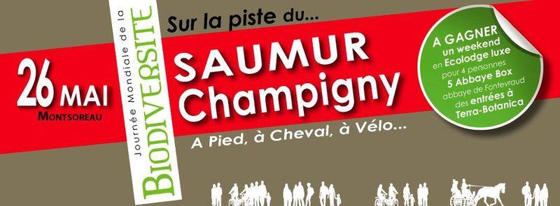 Saumurchampigny