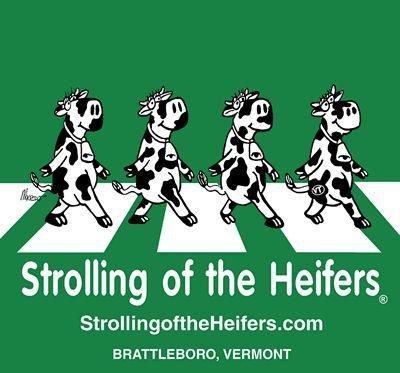 Strollingheifers